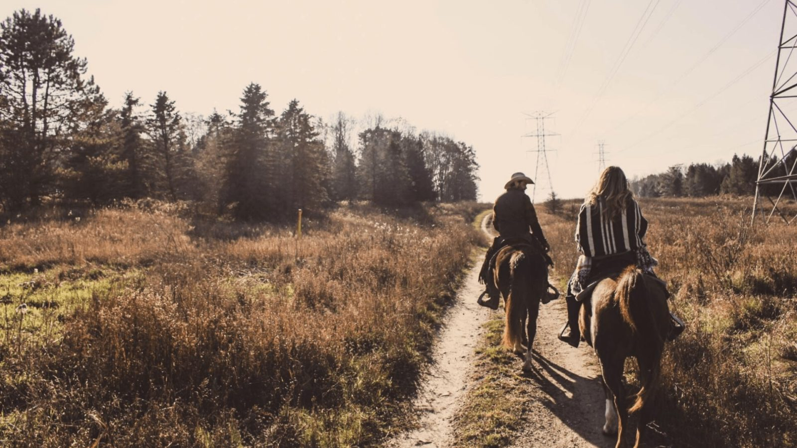 Horse Riding Tours in India